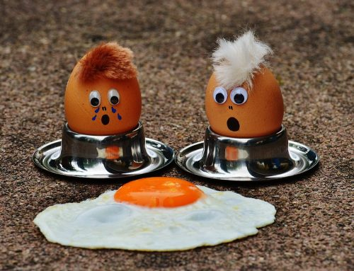 Protein: Why Is It So Important?